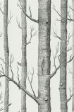 detail image of Cole & Son New Contemporary - Woods Wallpaper - Black & White 69/12147 - ROLL grey tree trunks on pale background repeated pattern