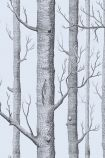 detail image of Cole & Son New Contemporary - Woods Wallpaper - Grey Blue 69/12150 - ROLL black tree trunks on lilac background repeated pattern