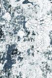 Feathr Safari Wallpaper by Kiki Slaughter - Steel - SAMPLE