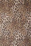 Rockett St George Leopard Love Wallpaper - ROLL