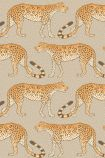 cutout image of Cole & Son - The Ardmore Collection - Leopard Walk - 190/2010 orange and white leopards repeated pattern on grey background