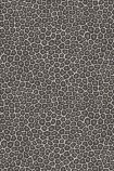 cutout image of Cole & Son - The Ardmore Collection - Senzo - 190/6031 grey spots with charcoal outline on grey background